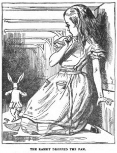 Image and Caption cropped